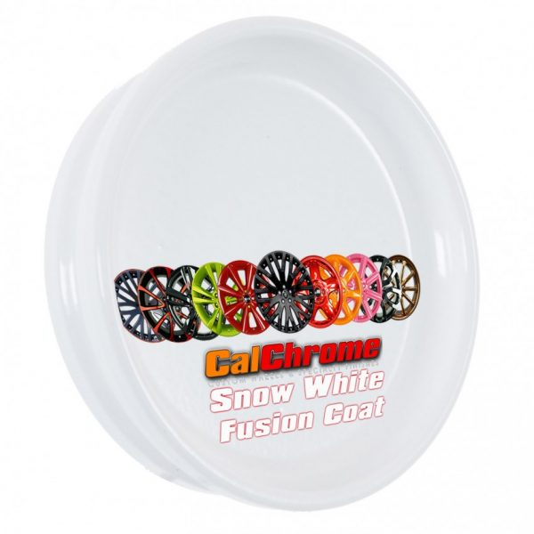 snow white color sample disk fusion powder coat